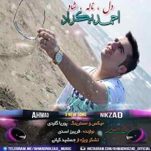 دانلود آهنگ ناله از احمد نیکزاد